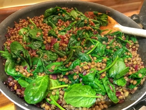 Autumn salad with Puy lentils, red wine and onions